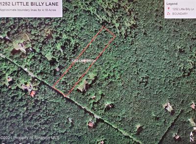 1252 LITTLE BILLY LN, Tobyhanna, PA 18466 - Photo 1