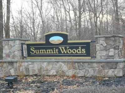 LOT 61 SUMMIT WOODS RD, ROARING BROOK TOWNSHIP, PA 18444 - Photo 1