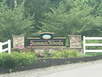 LOT 127 SUMMIT WOODS RD, MOSCOW, PA 18444 - Photo 1