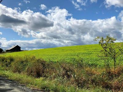 0 STATES ROAD, DALTON, PA 18414 - Photo 1