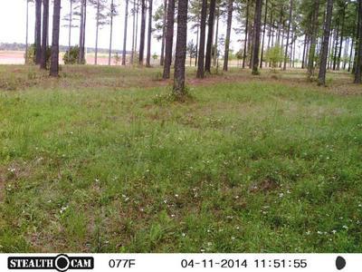 00 .CO.RD 187, Shorterville, AL 36373 - Photo 1