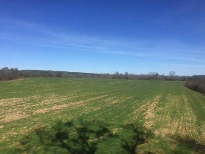 499 KNIGHT RD, Slocomb, AL 36375 - Photo 1