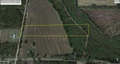 8.9 ACRE PEA MARKET RD LOT 6, Columbia, AL 36319 - Photo 2