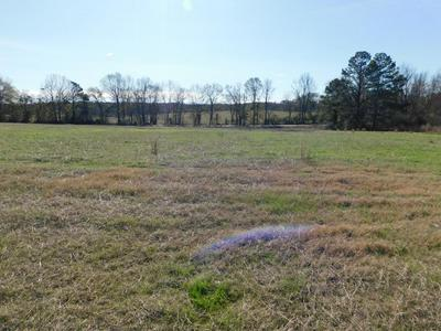 283 COUNTY ROAD 3314, Troy, AL 36079 - Photo 1