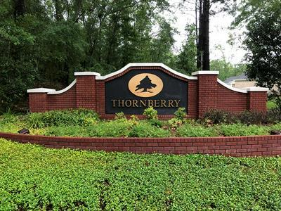 0 THORNBERRY, Ashford, AL 36312 - Photo 1