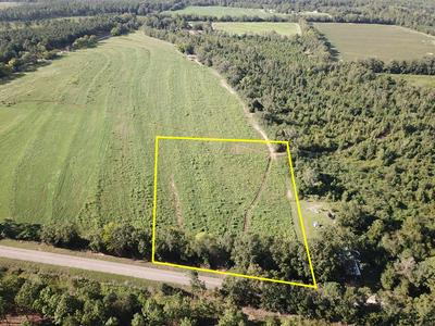 3 ACRES BILL YANCE RD LOT 10, Columbia, AL 36319 - Photo 1