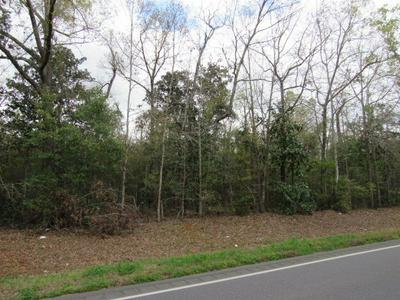 0 BENTON STORE RD, Columbia, AL 36319 - Photo 2