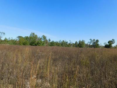 0 HILL RICKS, Eufaula, AL 36027 - Photo 1