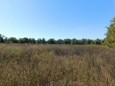 0 HILL RICKS, Eufaula, AL 36027 - Photo 2