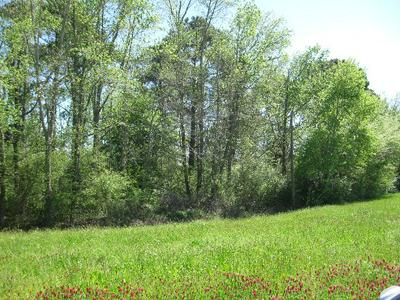0 E HIGHWAY 84, Cowarts, AL 36312 - Photo 2