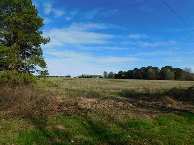 283 COUNTY ROAD 3314, Troy, AL 36079 - Photo 2