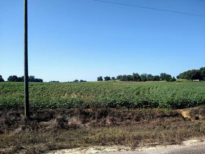 0 CEDAR SPRINGS RD., Ashford, AL 36312 - Photo 1