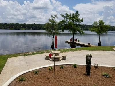 31058 RAWLS POINT ROAD, Andalusia, AL 36421 - Photo 2