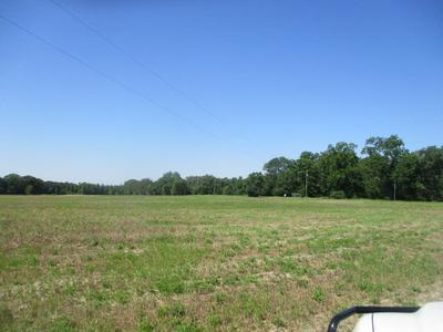0 PROVIDENCE RD, Slocomb, AL 36375 - Photo 2