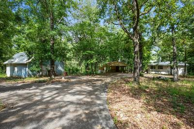 769 BUIE RD, Columbia, AL 36319 - Photo 2