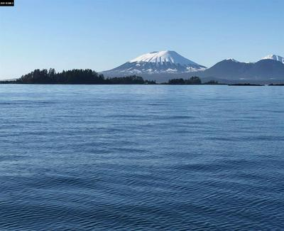 L16 SERENITY IS LEGAL ADDRESS ONLY, Sitka, AK 99835 - Photo 2