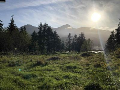 0 GREENWOOD AVE., Juneau, AK 99801 - Photo 1
