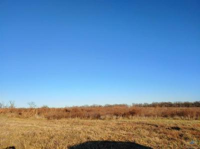 425 NW 1051ST RD, Centerview, MO 64019 - Photo 2