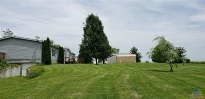 16353 HIGHWAY EE, SWEET SPRINGS, MO 65351 - Photo 2