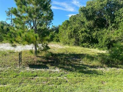 2198 WYANDOTTE AVE, Other City - In The State Of Florida, FL 33920 - Photo 1