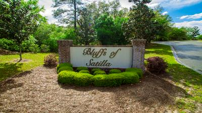 109 PLANTATION PINES DR, BLACKSHEAR, GA 31516 - Photo 2