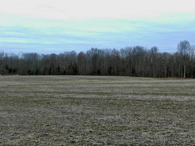 0 S COUNTY ROAD 150, Madison, IN 47250 - Photo 1