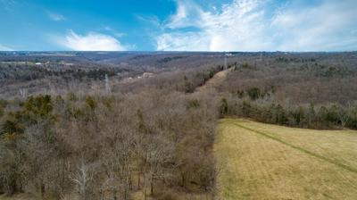 0 TURKEY POINT ROAD, Guilford, IN 47022 - Photo 2
