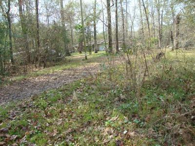 360 CO RD 877, Evadale, TX 77615 - Photo 2