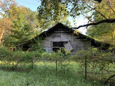 422 COUNTY ROAD 4102, CALL, TX 75933 - Photo 2