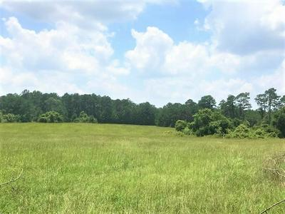 13582 COUNTY ROAD 701, Buna, TX 77612 - Photo 1