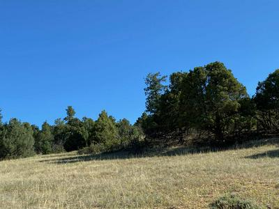 0 UNIT 6, Chama, NM 87520 - Photo 1