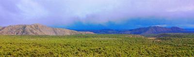 MILE MKR 7+ HIGHWAY 111, La Madera, NM 87539 - Photo 1
