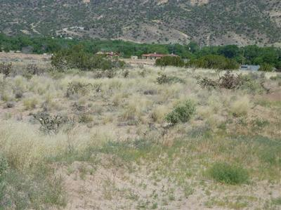 TRACT C C-1-A-1-A OF COTTONWOOD, LOS LUCEROS, NM 87582 - Photo 1