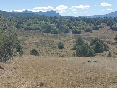 TRACT 123 & 124 UNIT 6, Chama, NM 87520 - Photo 1