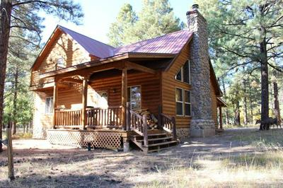 82 PD 1754 (SHADOW ROAD), CHAMA, NM 87520 - Photo 1