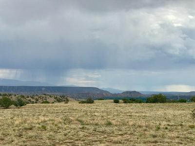 10.55 ACRES NOPAL DRIVE, Abiquiu, NM 87548 - Photo 1