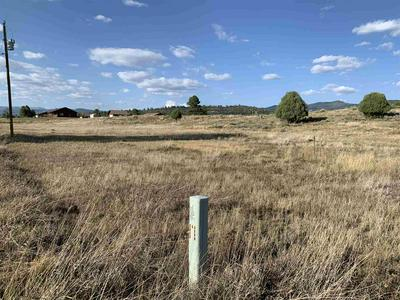 TBD PRIVATE DRIVE 1791, Chama, NM 87520 - Photo 2
