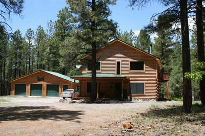 57 RUFOUS RIDGE ROAD #MILLSTONE SUBDIVISION, TIERRA AMARILLA, NM 87575 - Photo 1
