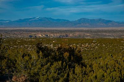 21 WILD MOUNTAIN ROAD, Cerrillos, NM 87010 - Photo 2
