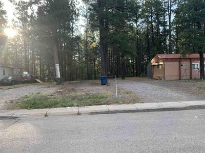 LOT 61 PARCEL A, Chama, NM 87520 - Photo 2