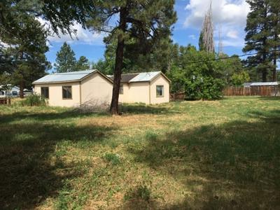477 7TH ST, CHAMA, NM 87520 - Photo 1