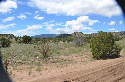 128 ROGERSVILLE, Cerrillos, NM 87010 - Photo 2