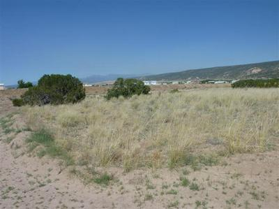 TRACT C LOT 4 OF FNRT, LOS LUCEROS, NM 87582 - Photo 1