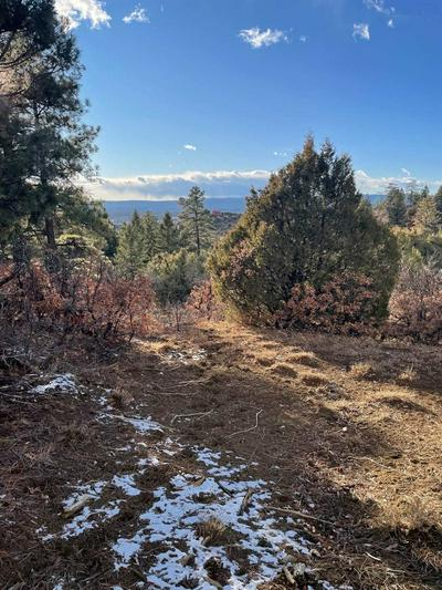 TRACT 68 PRIVATE RD 1781, Chama, NM 87520 - Photo 1