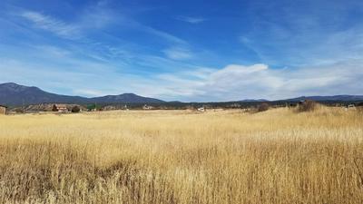 BACK OF 48 LOWER LLANO ROAD, Penasco, NM 87579 - Photo 1