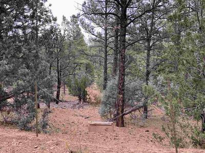 8 PINON RIDGE RD, Pecos, NM 87552 - Photo 2