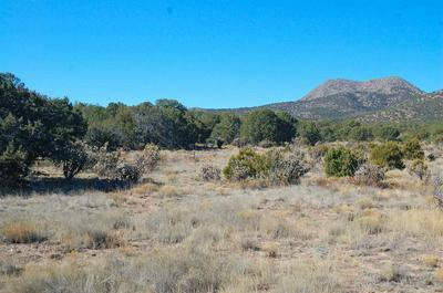 237 COW MILL RD, STANLEY, NM 87056 - Photo 1