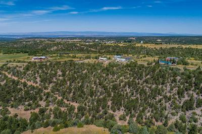 COUNTY ROAD 79 TRACT F, Truchas, NM 87578 - Photo 1