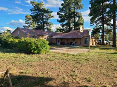 451 SANDOVAL ST, Chama, NM 87520 - Photo 1