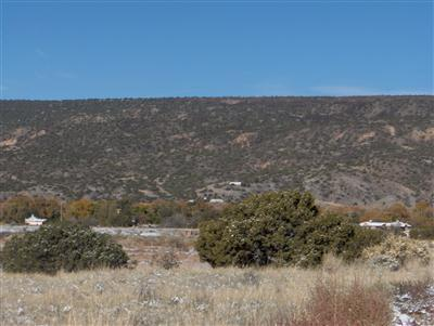 TRACT C LOT 5 OF FNRT, LOS LUCEROS, NM 87582 - Photo 1